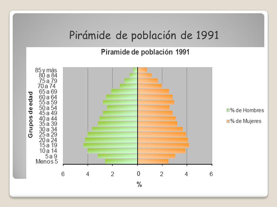Pirámide de población de 1991
