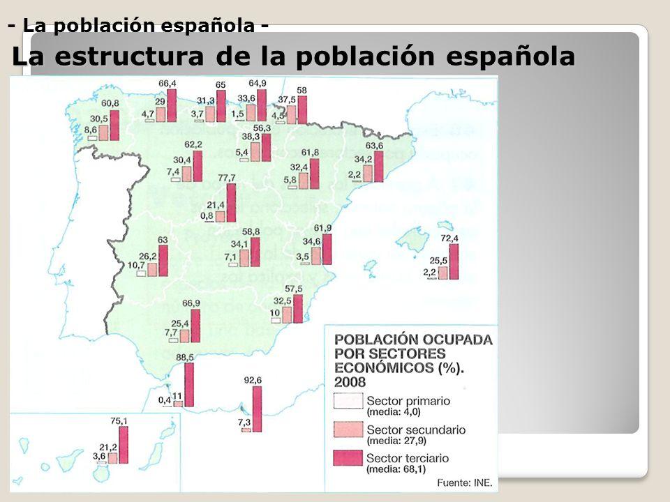- La población española - La estructura de la población española