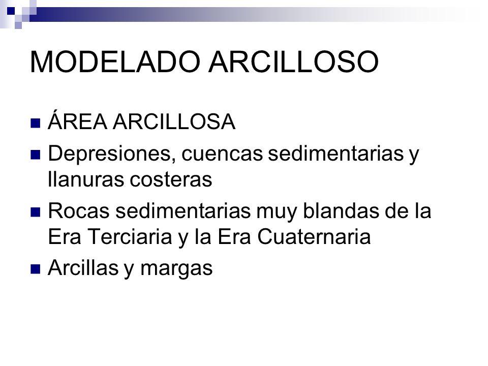 MODELADO ARCILLOSO ÁREA ARCILLOSA Depresiones, cuencas sedimentarias y llanuras costeras Rocas sedimentarias muy blandas de la Era Terciaria y la Era