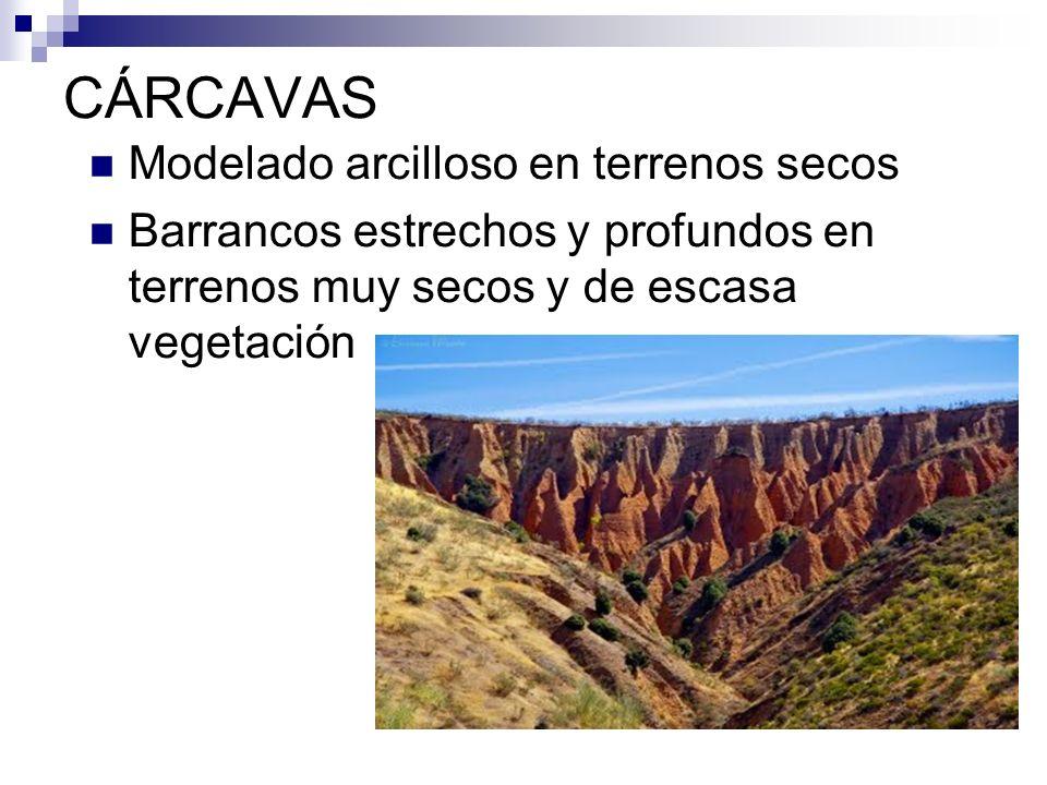 CÁRCAVAS Modelado arcilloso en terrenos secos Barrancos estrechos y profundos en terrenos muy secos y de escasa vegetación