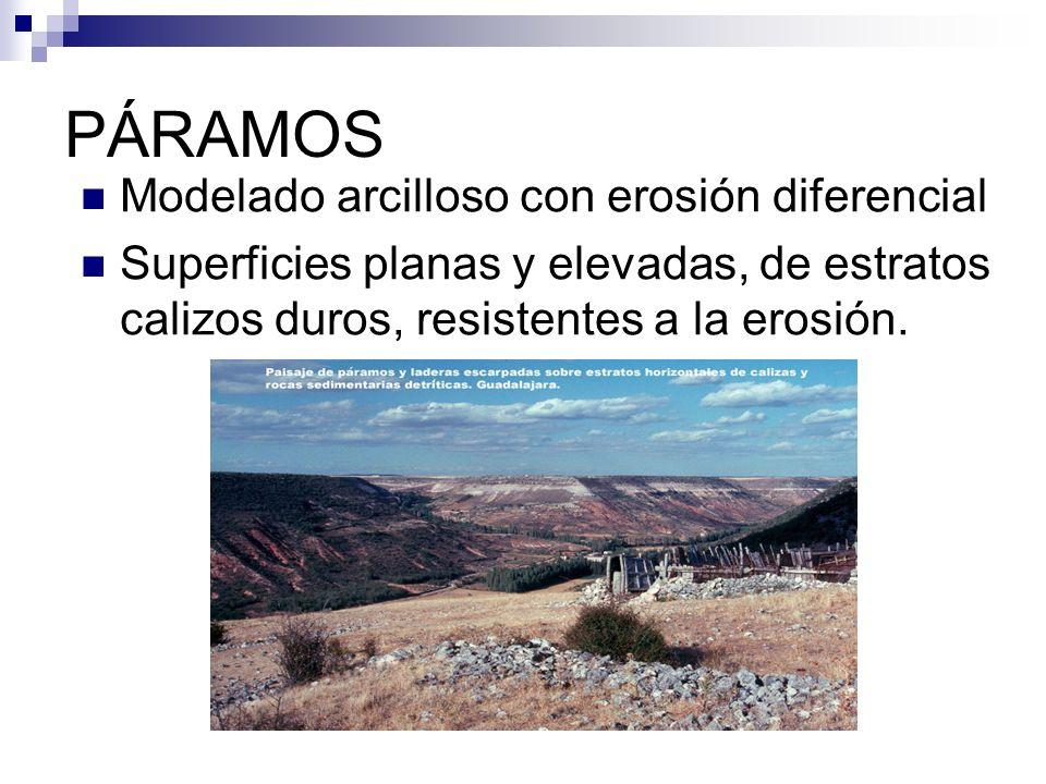 PÁRAMOS Modelado arcilloso con erosión diferencial Superficies planas y elevadas, de estratos calizos duros, resistentes a la erosión.