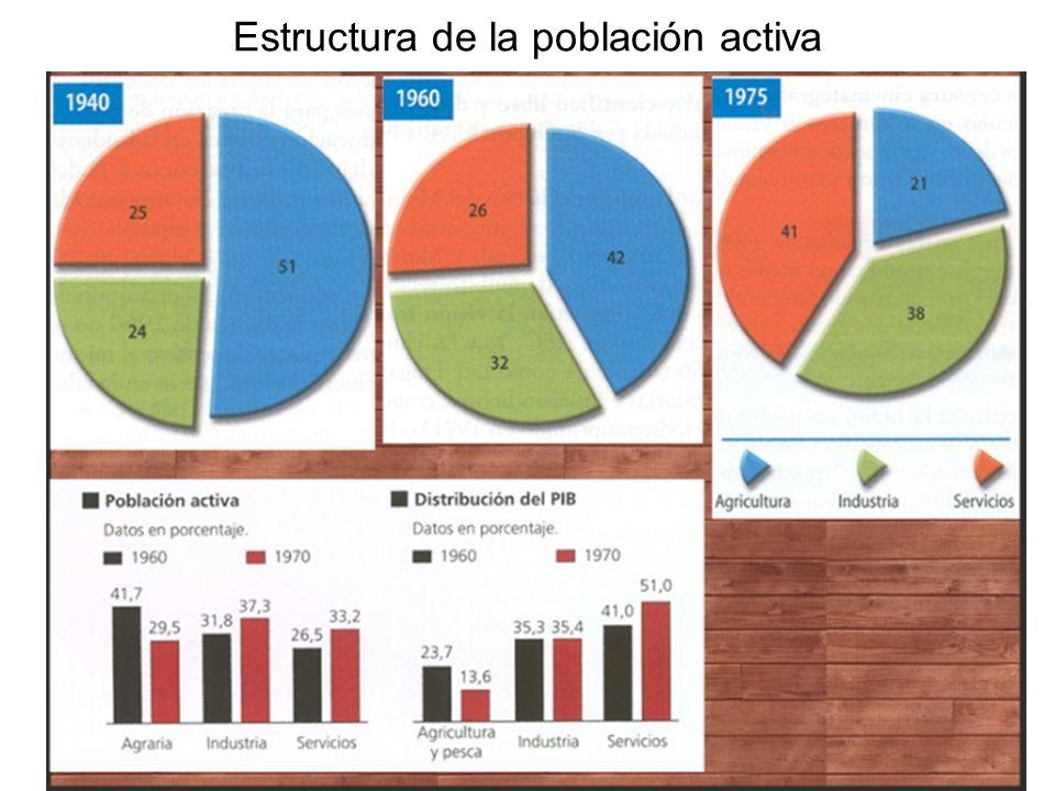 Estructura de la población activa