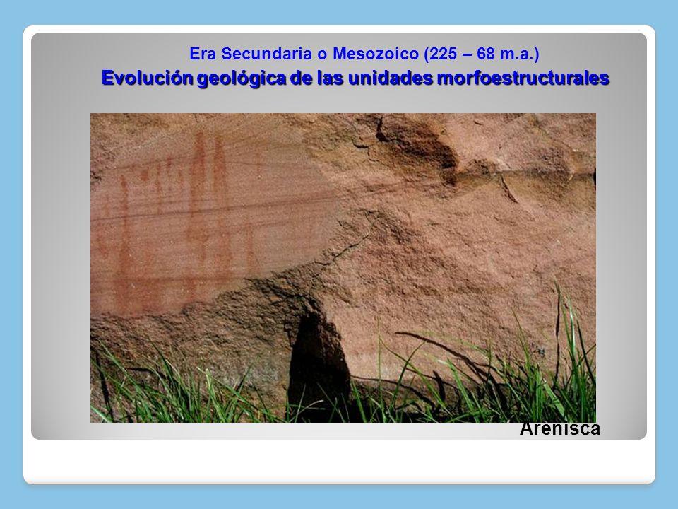 Arenisca Evolución geológica de las unidades morfoestructurales Era Secundaria o Mesozoico (225 – 68 m.a.)