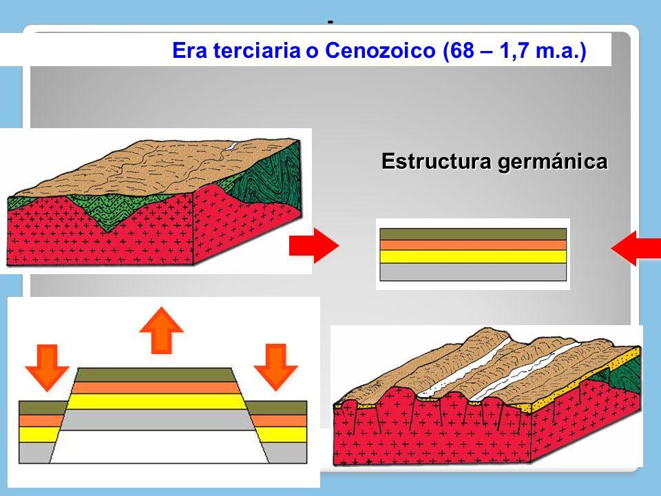 - Era terciaria o Cenozoico (68 – 1,7 m.a.) Estructura germánica