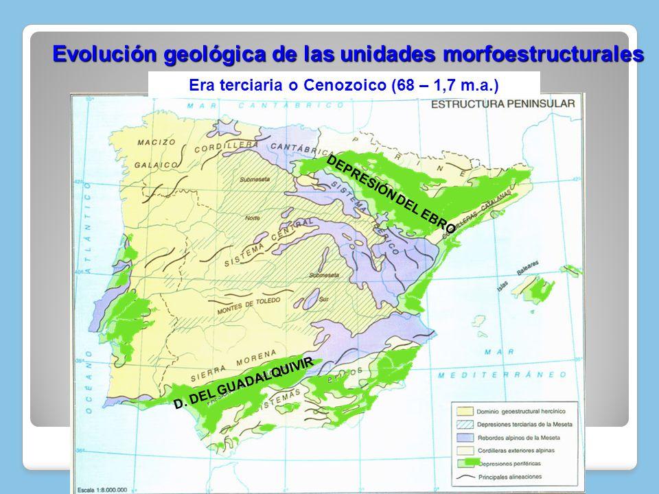 Evolución geológica de las unidades morfoestructurales Evolución geológica de las unidades morfoestructurales D E P R E S I Ó N D E L E B R O D. D E L