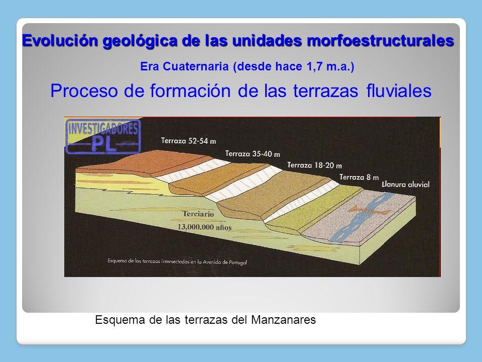 Esquema de las terrazas del Manzanares Era Cuaternaria (desde hace 1,7 m.a.) Evolución geológica de las unidades morfoestructurales Evolución geológic