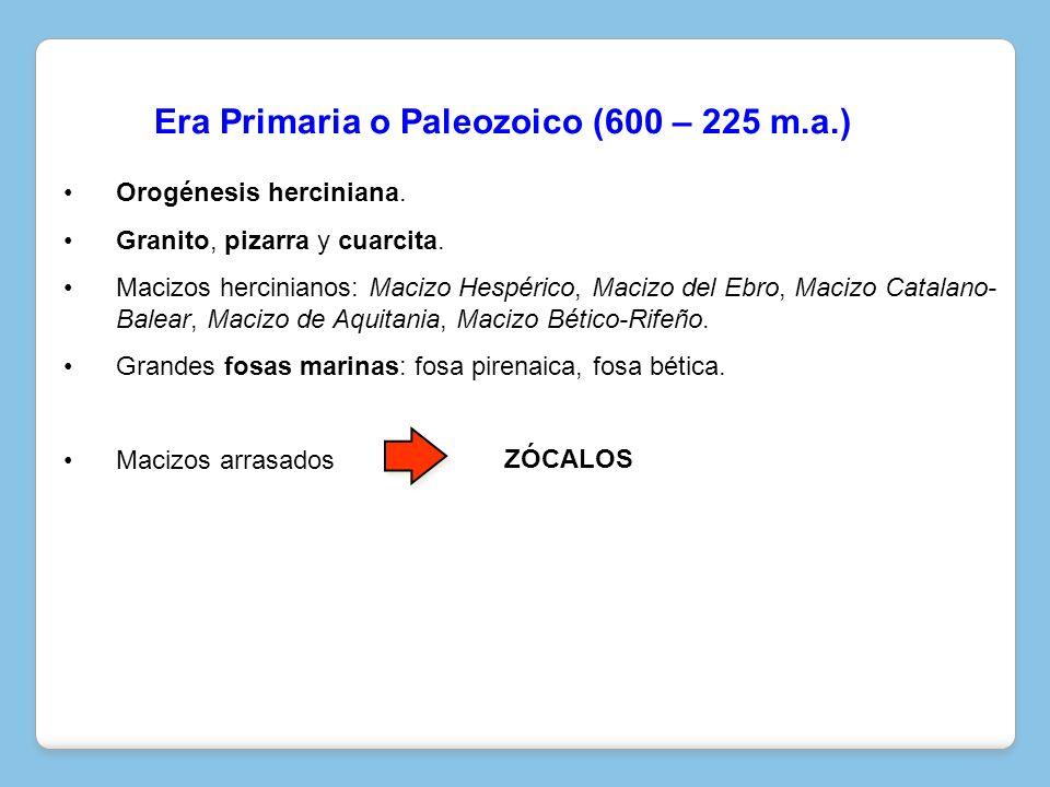 Orogénesis herciniana. Granito, pizarra y cuarcita. Macizos hercinianos: Macizo Hespérico, Macizo del Ebro, Macizo Catalano- Balear, Macizo de Aquitan