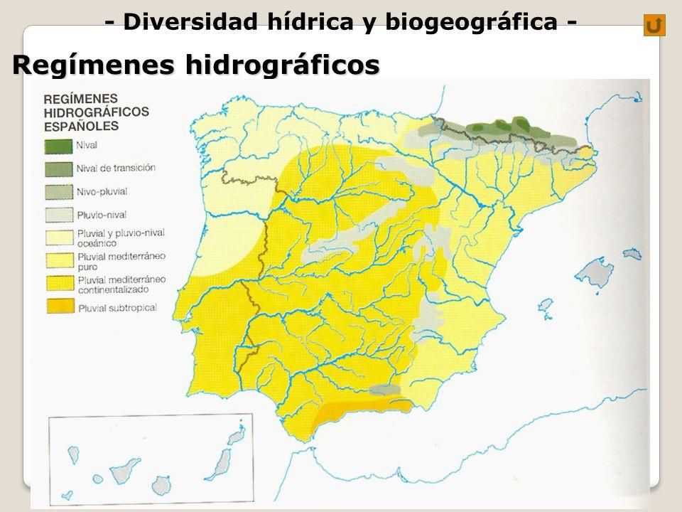 - Diversidad hídrica y biogeográfica - Regímenes hidrográficos