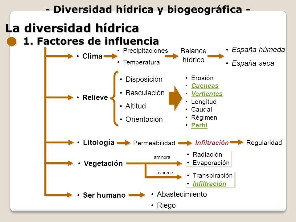Disposición Basculación Altitud Orientación aminora Precipitaciones Temperatura - Diversidad hídrica y biogeográfica - La diversidad hídrica 1. Factor