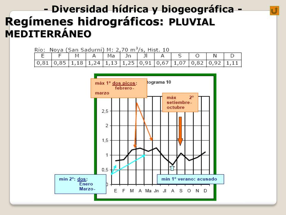 - Diversidad hídrica y biogeográfica - Regímenes hidrográficos: PLUVIAL MEDITERRÁNEO