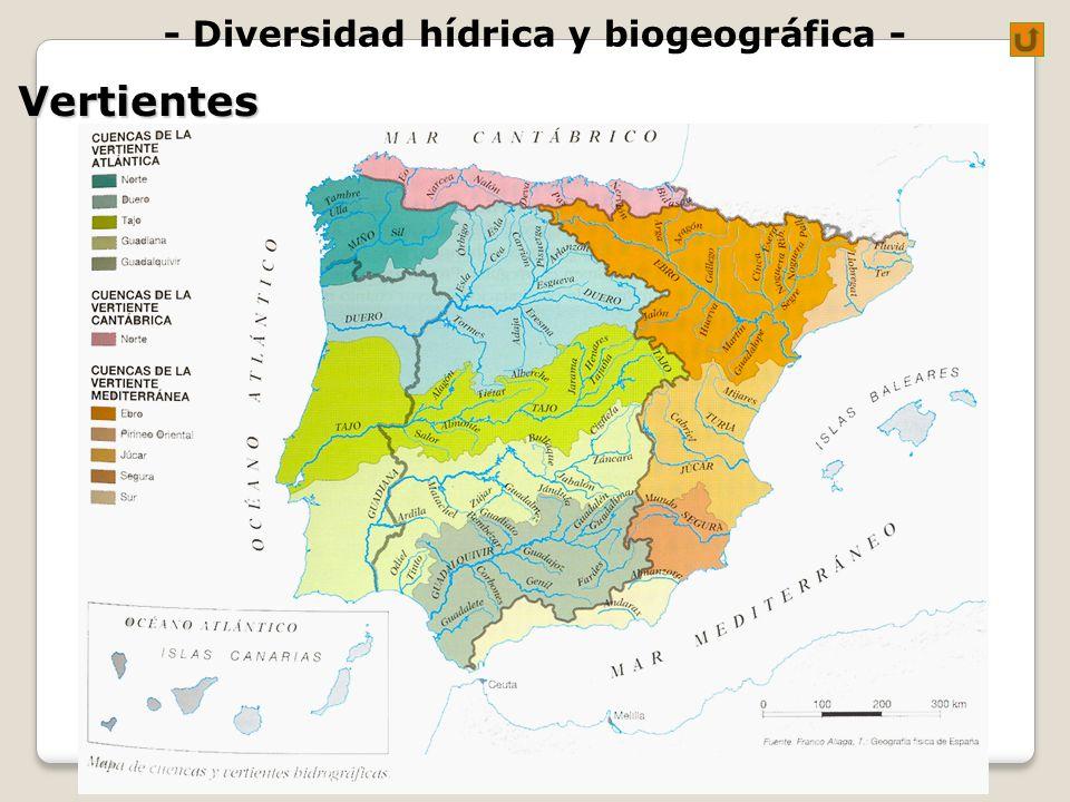 - Diversidad hídrica y biogeográfica -Vertientes