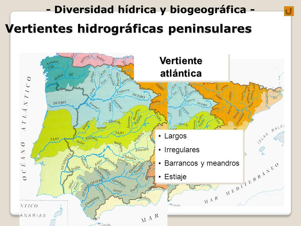 - Diversidad hídrica y biogeográfica -VertienteatlánticaVertienteatlántica Largos Irregulares Barrancos y meandros Estiaje Largos Irregulares Barranco