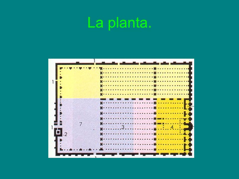 La planta.