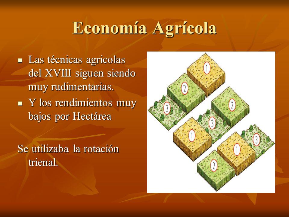 Economía Agrícola Las técnicas agricolas del XVIII siguen siendo muy rudimentarias. Las técnicas agricolas del XVIII siguen siendo muy rudimentarias.