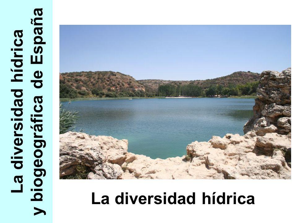 La diversidad hídrica y biogeográfica de España La diversidad hídrica
