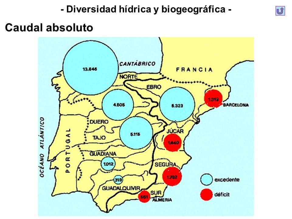 - Diversidad hídrica y biogeográfica - Caudal absoluto