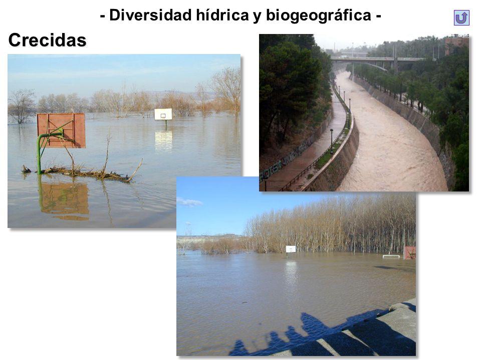 - Diversidad hídrica y biogeográfica -Crecidas