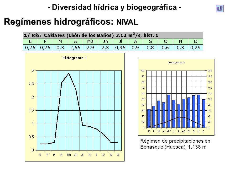 - Diversidad hídrica y biogeográfica - Regímenes hidrográficos: NIVAL Régimen de precipitaciones en Benasque (Huesca), 1.138 m