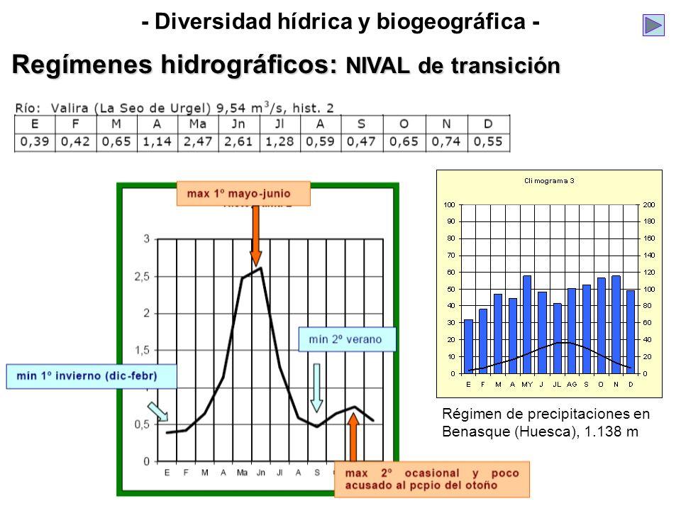- Diversidad hídrica y biogeográfica - Regímenes hidrográficos: NIVAL de transición Régimen de precipitaciones en Benasque (Huesca), 1.138 m