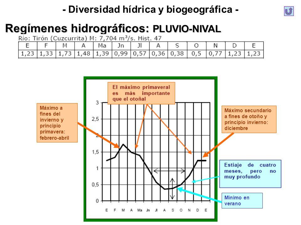 - Diversidad hídrica y biogeográfica - Regímenes hidrográficos: PLUVIO-NIVAL Máximo secundario a fines de otoño y principio invierno: diciembre Máximo