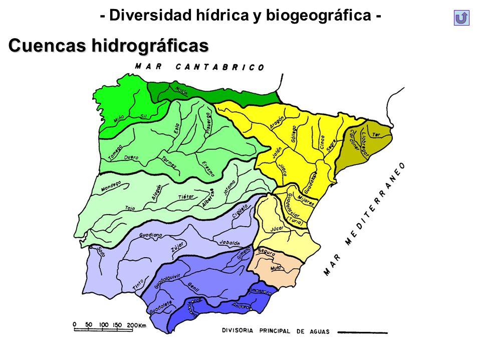 - Diversidad hídrica y biogeográfica - Cuencas hidrográficas