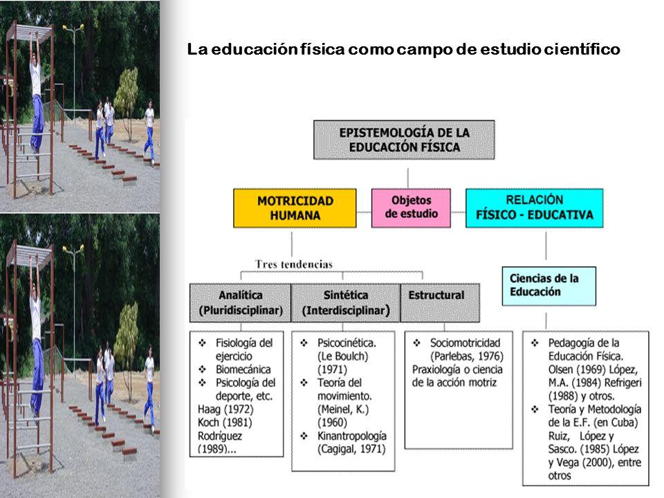 Paradigmas o Modelos pedagógicos de la Educación Física y el Deporte MODELO CIENTÍFICO MÉDICO O DEPORTIVIZANTE MODELO PSICOEDUCATIVO TENDENCIA SPICOMOTRÍZ MODELO SOCIOCULTURAL