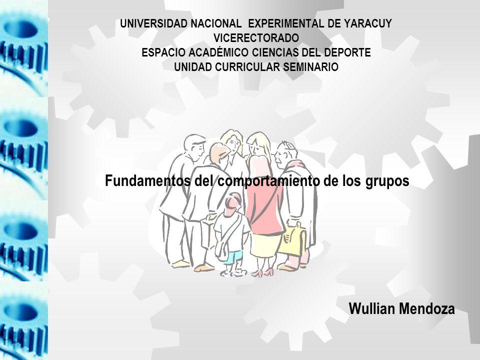Grupos de mando Grupos de trabajo Grupos de interés Grupos amistad CTV