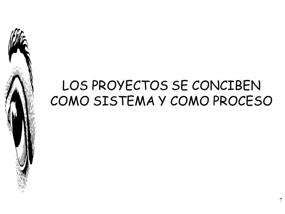 LOS PROYECTOS SE CONCIBEN COMO SISTEMA Y COMO PROCESO 7