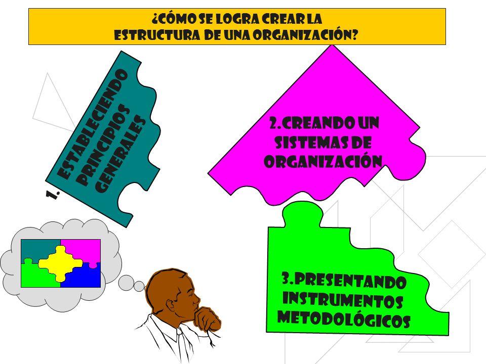 1.estableciendo Principios generales 2.creando un Sistemas de organización 3.presentando Instrumentos metodológicos ¿Cómo se logra crear la Estructura