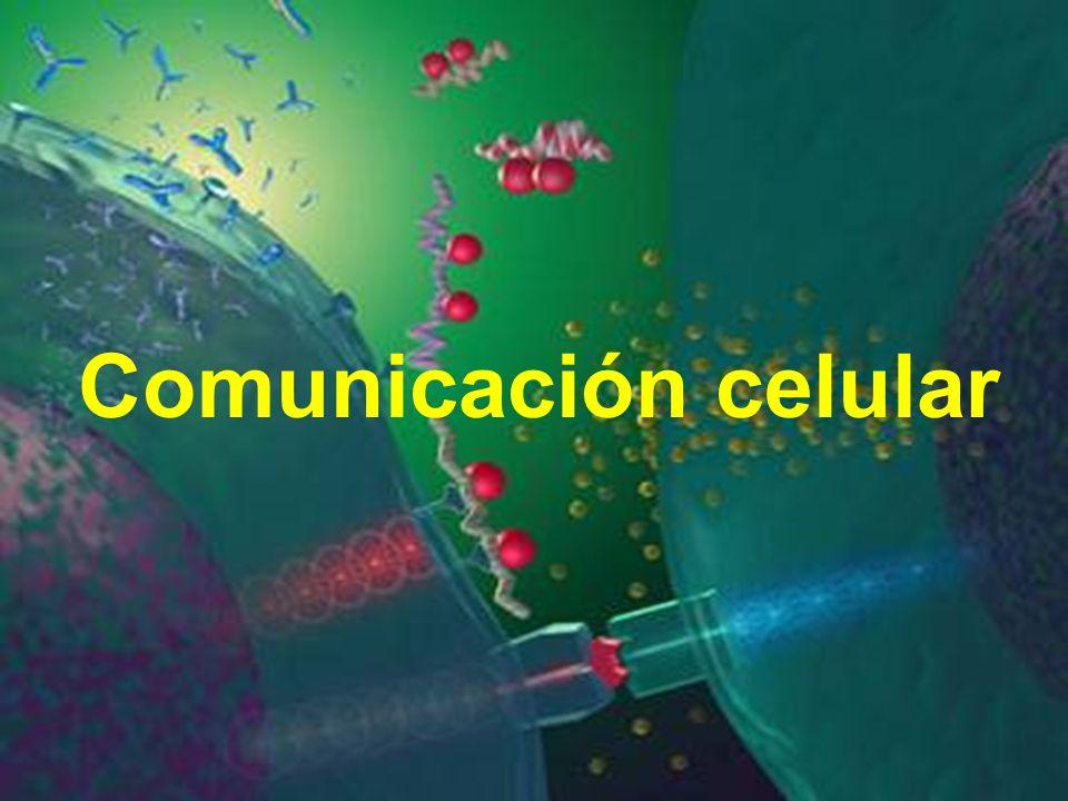 Free Powerpoint Templates Page 1 Comunicación celular