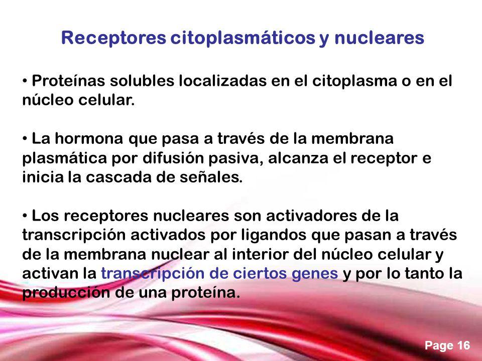 Free Powerpoint Templates Page 16 Receptores citoplasmáticos y nucleares Proteínas solubles localizadas en el citoplasma o en el núcleo celular. La ho