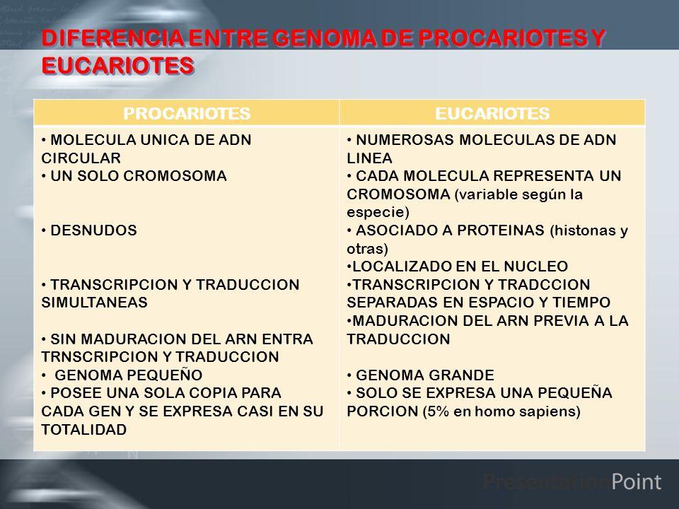 DIFERENCIA ENTRE GENOMA DE PROCARIOTES Y EUCARIOTES PROCARIOTESEUCARIOTES MOLECULA UNICA DE ADN CIRCULAR UN SOLO CROMOSOMA DESNUDOS TRANSCRIPCION Y TR