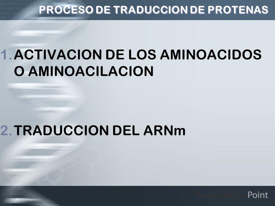 PROCESO DE TRADUCCION DE PROTENAS 1.ACTIVACION DE LOS AMINOACIDOS O AMINOACILACION 2.TRADUCCION DEL ARNm
