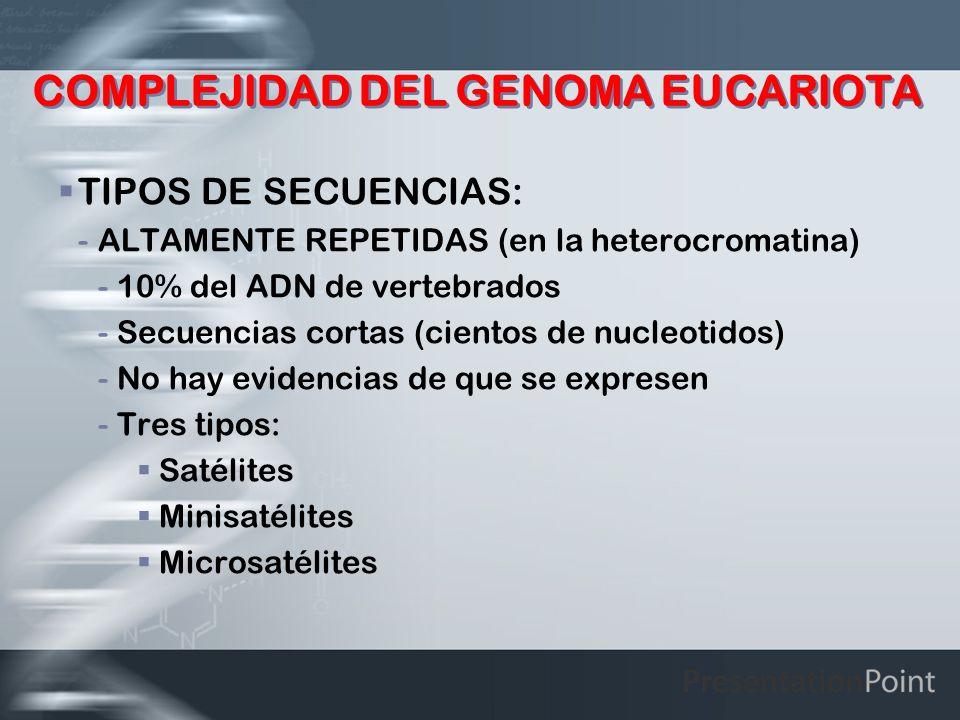 COMPLEJIDAD DEL GENOMA EUCARIOTA TIPOS DE SECUENCIAS: -ALTAMENTE REPETIDAS (en la heterocromatina) -10% del ADN de vertebrados -Secuencias cortas (cie