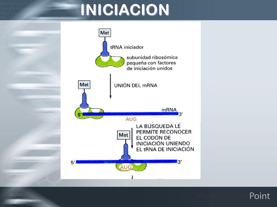 INICIACION