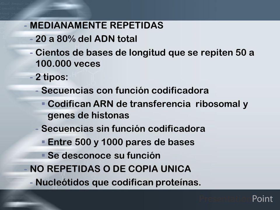 -MEDIANAMENTE REPETIDAS -20 a 80% del ADN total -Cientos de bases de longitud que se repiten 50 a 100.000 veces -2 tipos: -Secuencias con función codi