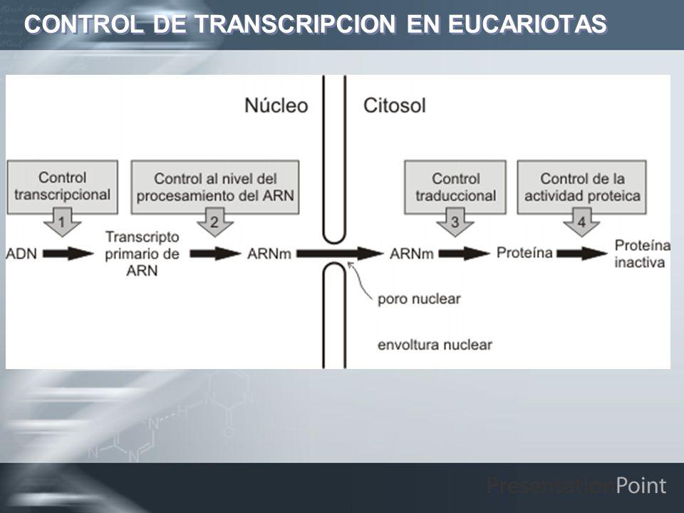 CONTROL DE TRANSCRIPCION EN EUCARIOTAS