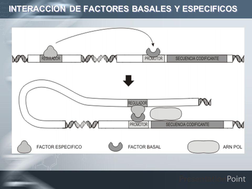 INTERACCION DE FACTORES BASALES Y ESPECIFICOS