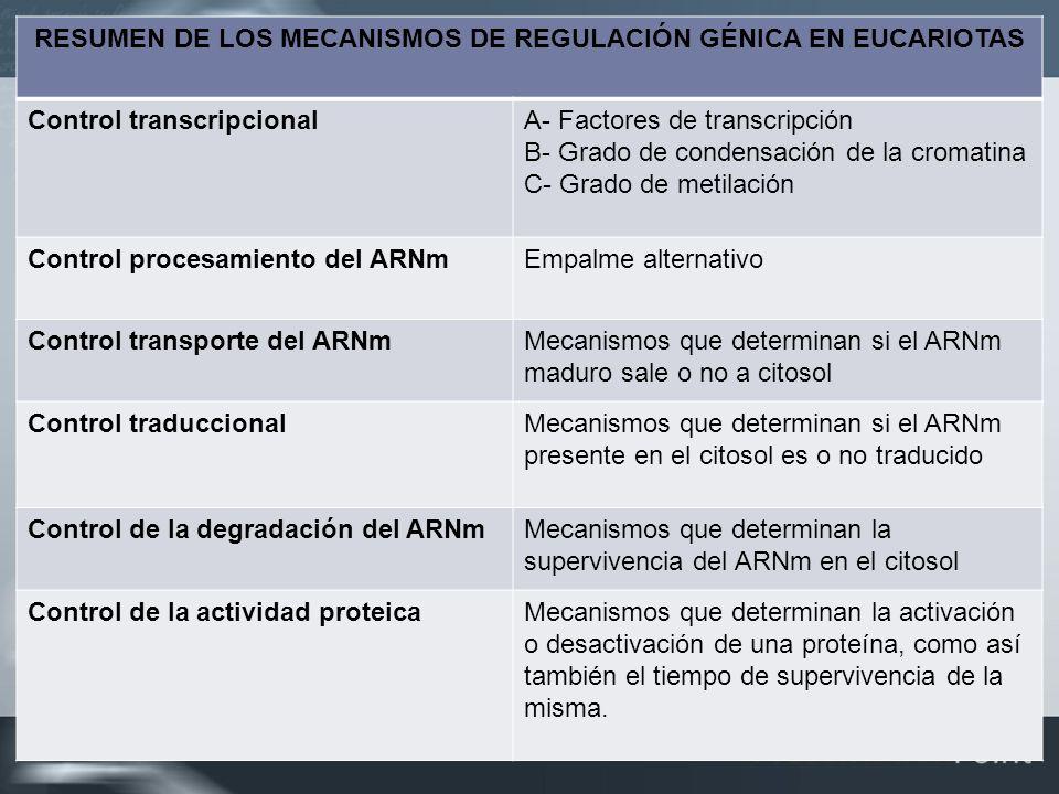 RESUMEN DE LOS MECANISMOS DE REGULACIÓN GÉNICA EN EUCARIOTAS Control transcripcionalA- Factores de transcripción B- Grado de condensación de la cromat