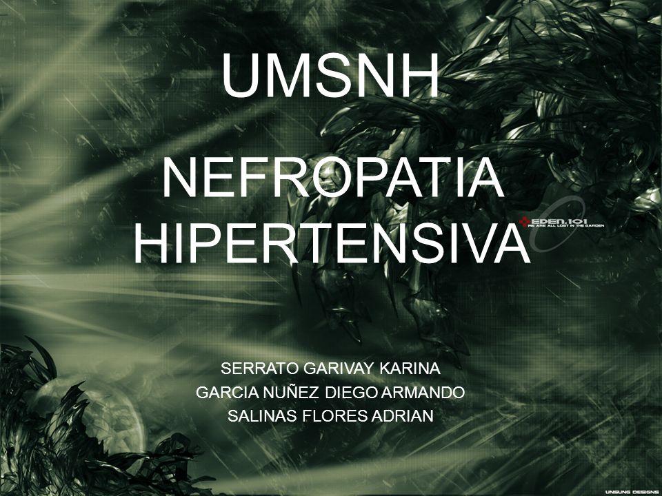 UMSNH NEFROPATIA HIPERTENSIVA SERRATO GARIVAY KARINA GARCIA NUÑEZ DIEGO ARMANDO SALINAS FLORES ADRIAN