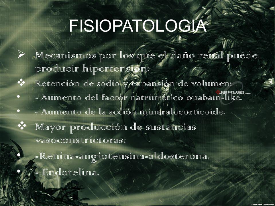 FISIOPATOLOGIA Mecanismos por los que el daño renal puede producir hipertensión: Retención de sodio y expansión de volumen: - Aumento del factor natri