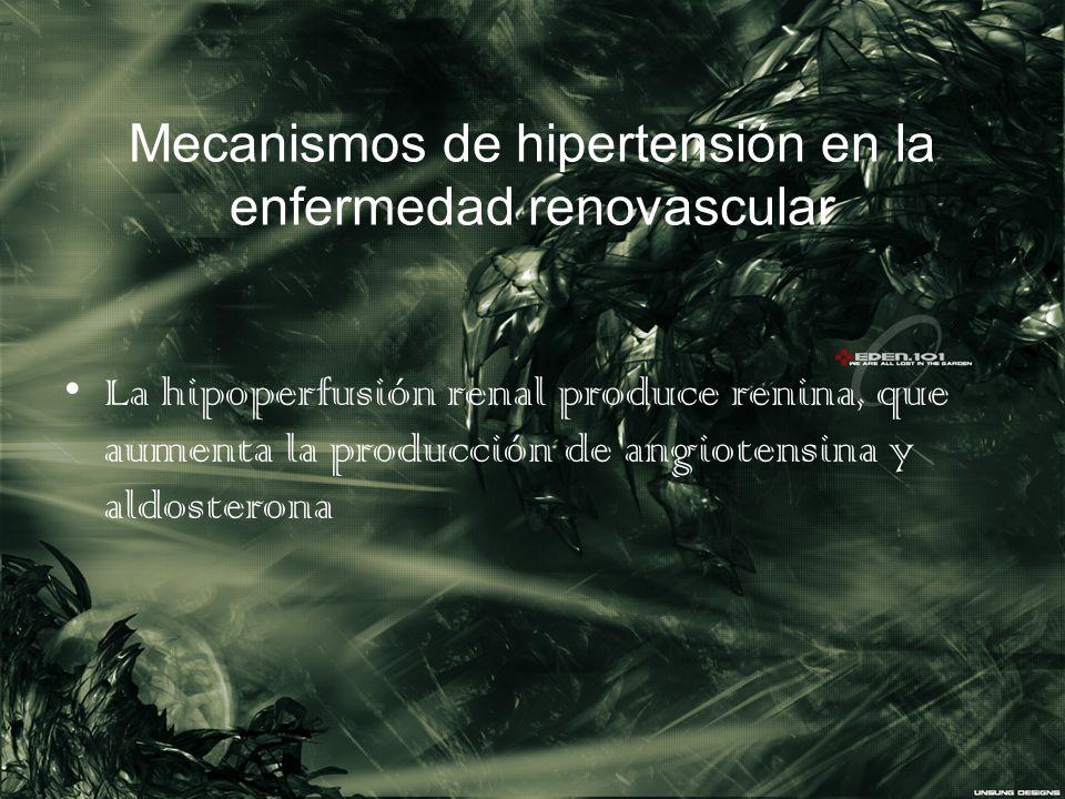 Mecanismos de hipertensión en la enfermedad renovascular La hipoperfusión renal produce renina, que aumenta la producción de angiotensina y aldosteron