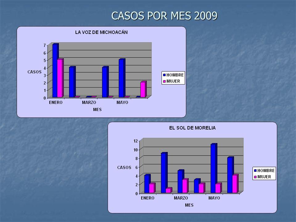 CASOS POR MES 2009