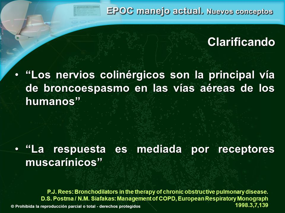 P.J. Rees: Bronchodilators in the therapy of chronic obstructive pulmonary disease. D.S. Postma / N.M. Siafakas: Management of COPD, European Respirat