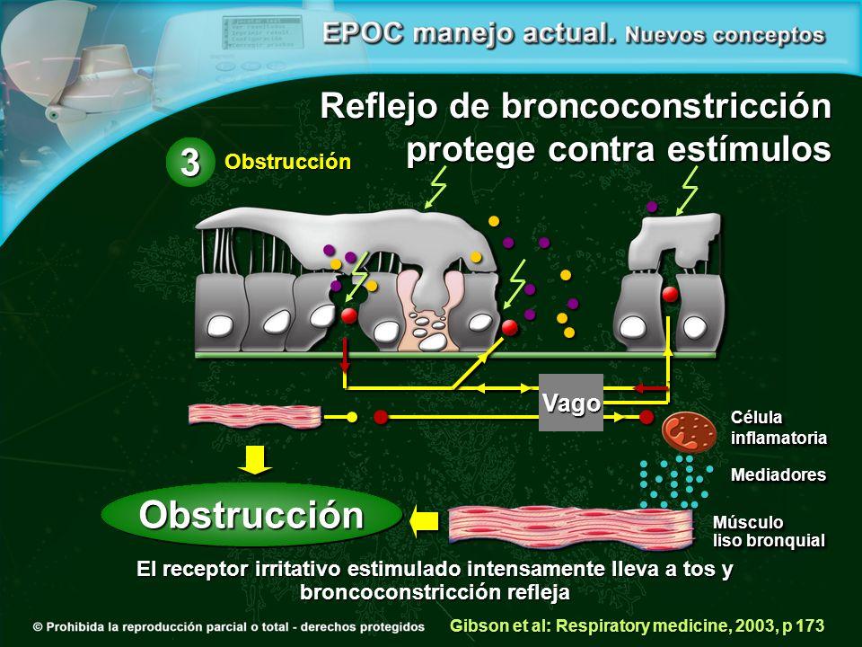 El receptor irritativo estimulado intensamente lleva a tos y broncoconstricción refleja Reflejo de broncoconstricción protege contra estímulos Gibson