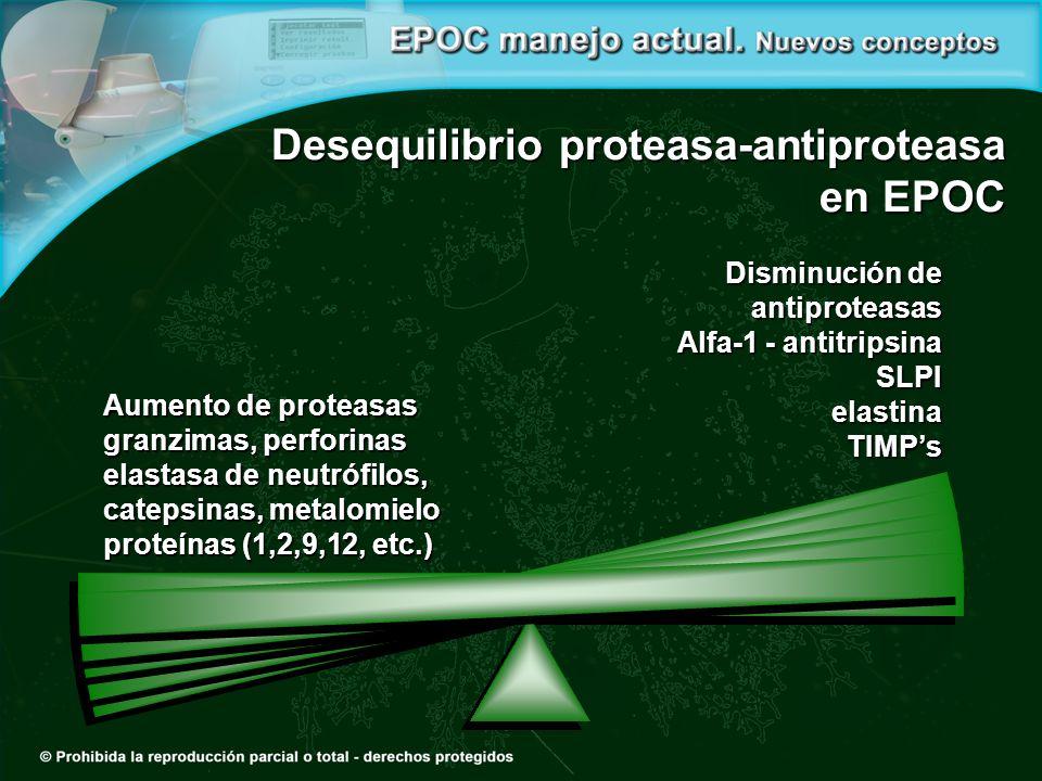 Desequilibrio proteasa-antiproteasa en EPOC Aumento de proteasas granzimas, perforinas elastasa de neutrófilos, catepsinas, metalomielo proteínas (1,2