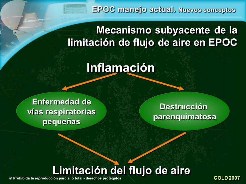 Inflamación Destrucciónparenquimatosa Limitación del flujo de aire GOLD 2007 Mecanismo subyacente de la limitación de flujo de aire en EPOC Enfermedad de vías respiratorias pequeñas