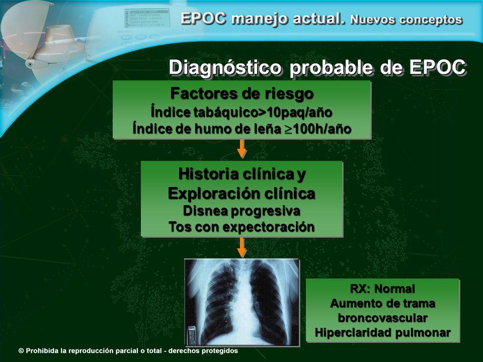 Diagnóstico probable de EPOC Factores de riesgo Í ndice tabáquico>10paq/año Índice de humo de leña 100h/año Factores de riesgo Í ndice tabáquico>10paq
