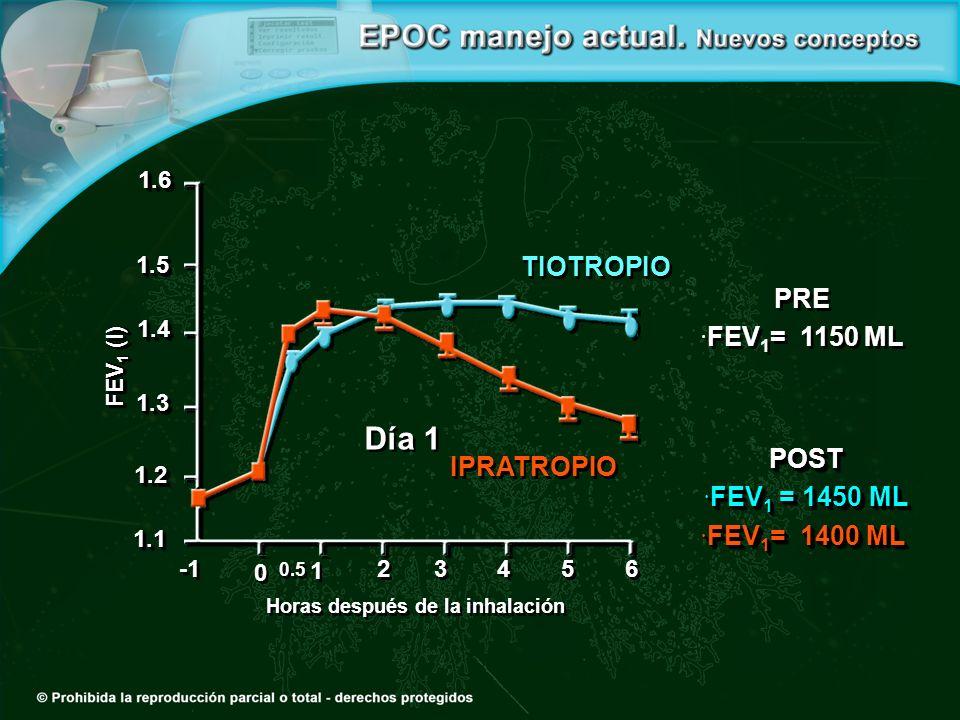 Día 1 0 0 1 1 2 2 3 3 4 4 1.21.2 1.31.3 1.41.4 1.51.5 1.61.6 1.11.1 5 5 6 6 Horas después de la inhalación FEV 1 (l) PRE FEV 1 = 1150 ML PRE FEV 1 = 1150 ML POST FEV 1 = 1450 ML FEV 1 = 1450 ML FEV 1 = 1400 ML FEV 1 = 1400 MLPOST FEV 1 = 1450 ML FEV 1 = 1450 ML FEV 1 = 1400 ML FEV 1 = 1400 ML TIOTROPIO IPRATROPIO 0.5