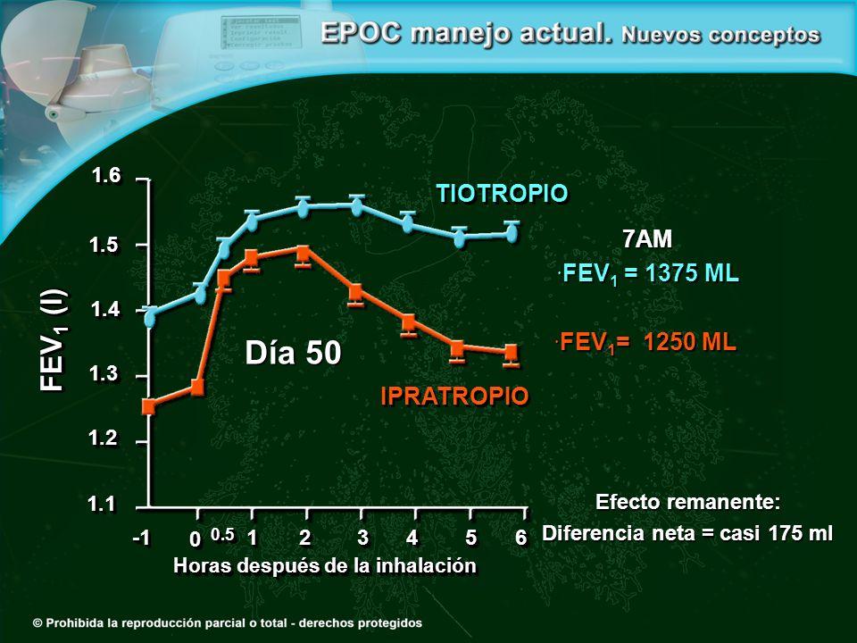 Día 50 00 0.50.5 11223344 1.21.2 1.31.3 1.41.4 1.51.5 1.61.6 1.11.15566 Horas después de la inhalación FEV 1 (l) 7AM FEV 1 = 1375 ML FEV 1 = 1375 ML FEV 1 = 1250 ML FEV 1 = 1250 ML Efecto remanente: Diferencia neta = casi 175 ml TIOTROPIO IPRATROPIO